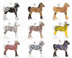 owed hototo foals by AhernStables