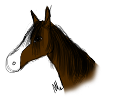 Bay Horse Headshot by RBSRdesigns