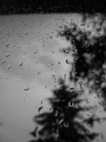window rain 1 by fi-j