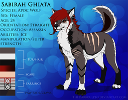 Sabirah Wolf Ref Sheet by TheWiggleKing