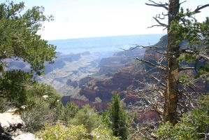 The Grand Canyon by Angus4greenie