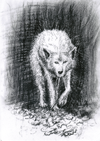 Animal of Force: White Wolf by dyvosvet