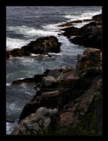Acadia Shoreline Print by trashydragon
