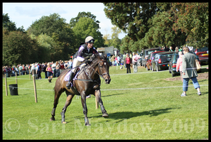 Burghley Horse Trials II by kittywinter