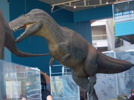 Acrocanthosaurus of the Early-Mid Cretaceous! by timbox129