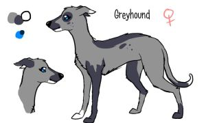 Greyhound for Tanglestarstudious by PurryProductions-Inc