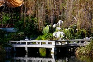 Chines Gardens Darling Harbour by ianmcleod9