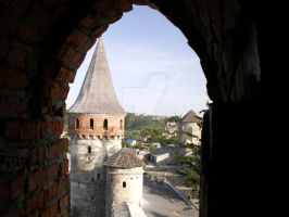 Kamianets - castle tower by kwizar