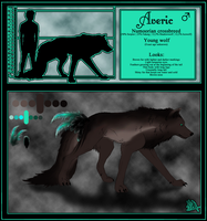 Averic - Reference Sheet by Nellaahh
