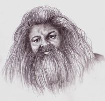 Rubeus Hagrid by LeahRosslyn