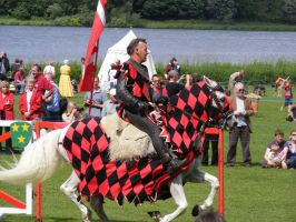 Jousting - Knight 88 by Axy-stock