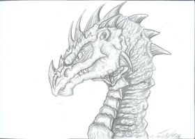 Old dragons head by Ruth-Tay