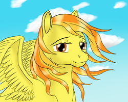 My little Spitfire by Vasillium