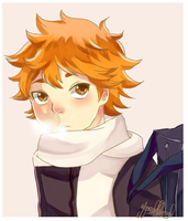 Hinata Shouyou by hellfire-shield