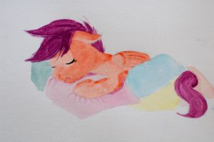 Scoots pillow nap by bobbilcon
