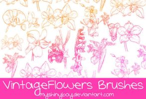 Vintage Flowers Brushes by MyShinyBoy