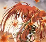Shana in twin tails by xephonia