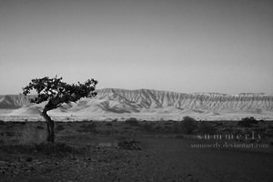 Namibia - XVII by Summerly