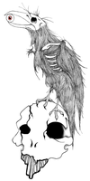 Skull And Crow by DeviousLaughter677