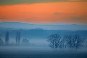 Evening Mist by Desintegrator
