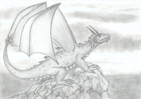 Dragon by ActionMarc
