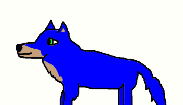 sonic as a wolf by sonicandbigtimerush