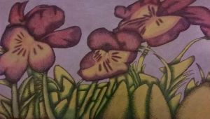 Drawing #72 Flowers in Grass (Pencils and Pen) by AidanJA
