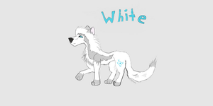 White Character Sheet by Wolvesreign23