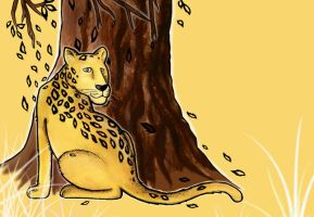 How the leopard got his spots by Finnish-Penguin