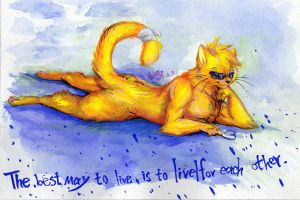 JC the yellow cat by dragon-x2