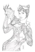 Catwoman 2 Pencils by Dave-Acosta