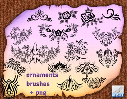 Ornaments Brushes by roula33