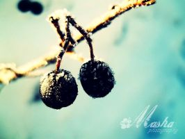 Winter joke by Photography-Of-Masha