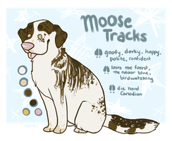Moosey by cakes-cabana