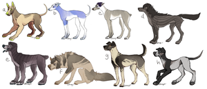 dog adoptables dump SOLD OUT by gr-ay