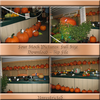 Pumkin Four Pack by WDWParksGal-Stock