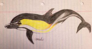 Common Dolphin character by Miahii