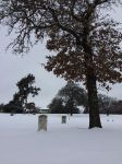 Snow Covered Graves by PeaceFrogArt