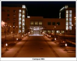 Campus HBG Nightcorrected by firelight