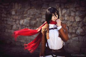 Cosband WTF People - Mikasa Ackerman by fausto-The-Endless