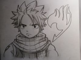 Natsu Dragneel - Fairy Tail by GriggsTheWhore