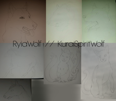 Sketches by RyiaWolf