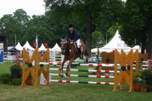 Show Jumping Stock 35 by LuDa-Stock