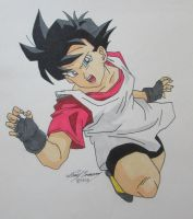 Videl in action! by gokujr96