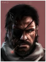 Big Boss by sbel02