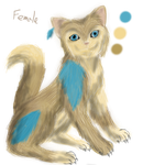 Kitty for auction by AtlanticGryphon