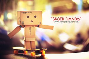 Sk8er Danbo by lightingrey