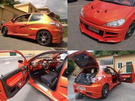Peugeot 206 GTI tuning by waste84