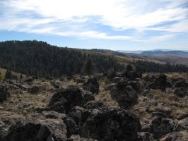 Rocks 1 -- Nov 2009 by pricecw-stock
