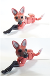 Maned Wolf BJD 08 by vonBorowsky